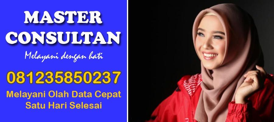Jasa Pengerjaan Olah Data SPSS Cepat Murah di Singkawang